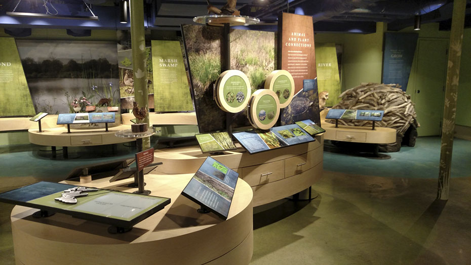 INTERACTIVE STATIONS AND DISCOVERY DRAWERS